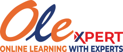 Online Learning With Experts - OLE